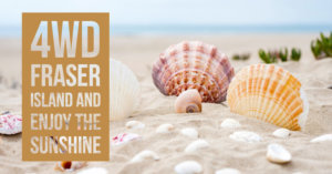 Fraser Island sunshine