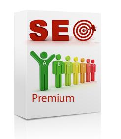 informatix-seo-premium