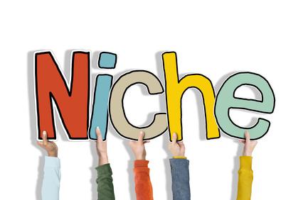 Niche Online Branding